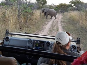 5 Day Mokoro and Tour Safari in Okavango Delta, Botswana