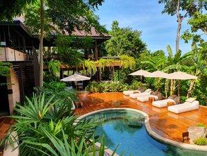 9 Day Colema, Meditation, Wellness, and Yoga Retreat in Koh Samui, Surat Thani