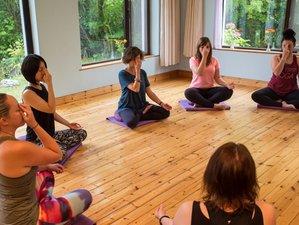 3 días de meditación consciente y retiro de yoga en Kinvara, Irlanda con Eleanor Dawson