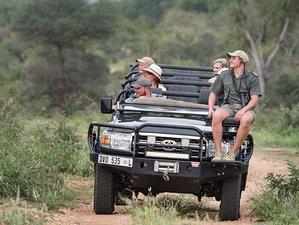 5 Days Bush Safari in Balule Nature Reserve, South Africa