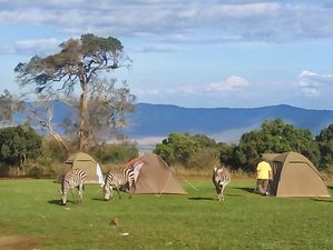 6 Days Tanzania Best Ever Adventure - Camping