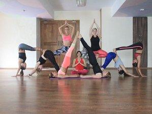 13 jours-100h de formation de professeur de hatha yoga à Mysore, Inde