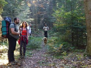 5 Days Trekking Safari in the Rhodope Mountains, Bulgaria