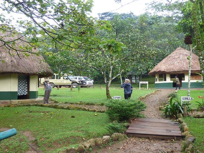 3 Days Gorilla Trekking Safari in Bwindi National Park, Africa