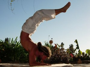 8 Day Private Intensive Yoga Retreat with Raw Food for 2 Guests on La Palma, Canary Islands