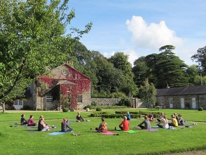 3 Days New Year's Yoga Retreat in Ireland