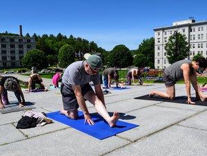 82 Day 300-Hour Online Yoga Teacher Training Course