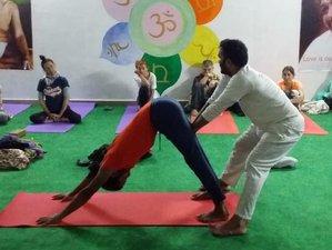 22 Day-200 Hours Yoga Teacher Training in Rishikesh