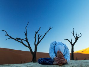 10 Days Yoga Wildlife Adventure in Namibia, Africa
