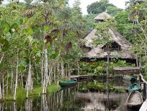 4 Day Sacha Lodge Hiking, Canoe Riding, Canopy Walking, and Wildlife Tour in Yasuni, Ecuador