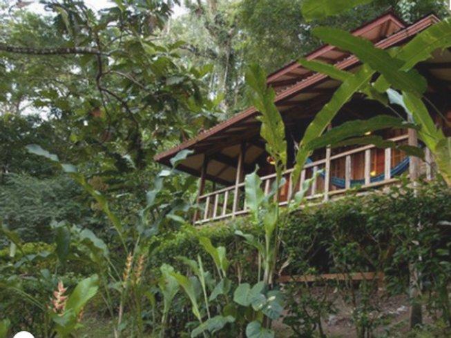 29-Daagse 300-urige Yoga Docentenopleiding in Puerto Viejo, Costa Rica