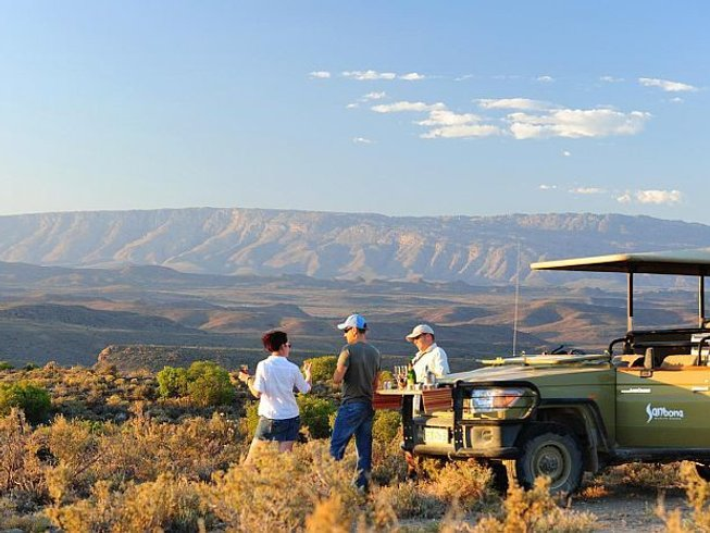 8 Days Beach, Wine Tour, and Safari in Western Cape, South Africa