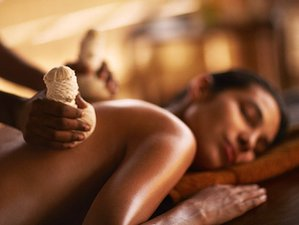 6 Days Women's Luxury Wellness with Ayurveda Treatments and Yoga in Negombo, Sri Lanka