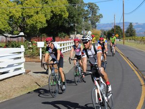 6 Days Epic Sonoma Bike Tour in California, USA
