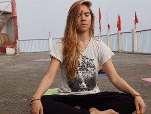 15 Tage Günstiger Meditations- und Yoga Urlaub in Rishikesh, Indien