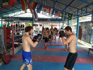 1 Month Muay Thai Training in Koh Phangan, Surat Thani