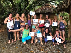 8 Day CircAsana 200-Hour Yoga Teacher Training Course Module 1 in Bocas del Toro