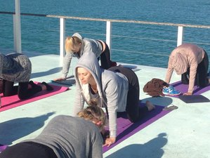 4 Days Yoga Retreat in Western Cape, South Africa