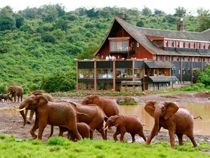 6 Days Essential Safaris in Kenya