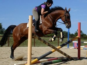 7 Days Inspirational Horse Riding Training with Luxury Accommodation in Nouvelle-Aquitaine, France