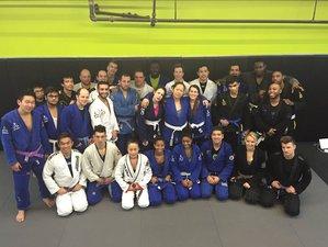 6 Days Summer Martial Arts Training in Japan