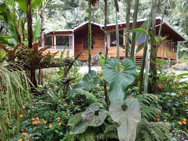 8 Days Raw Food, Ashtanga Yoga, Hiking Retreat in Ecuador