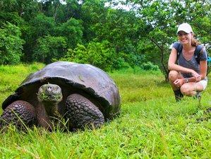 4 Day Unforgettable Islands Tour to Santa Cruz and Santa Fe in Galapagos, Ecuador