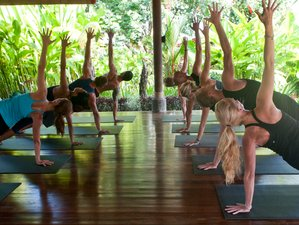 7 Days Indulging Yoga Retreat Bali