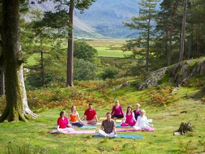 3 Days Give Back to Nature: Tree Planting and Yoga Retreat in Snowdonia, UK