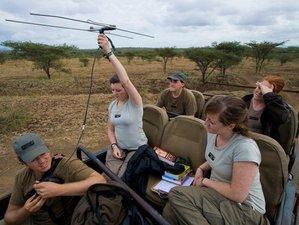 14 Days Conservation Safari South Africa