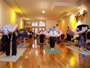 12 Days Cultural Tour and Yoga Retreat in India