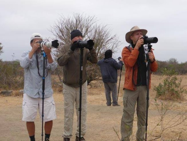 10 Days Guided Photography Safari South Africa