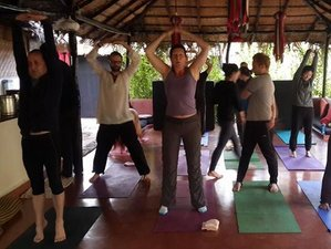 7 Days Rejuvenating Meditation and Yoga Retreat in Goa, India
