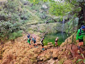 Trail Running - Yoga Retreat, Madeira Island, Portugal - 8 Day Urban Choice