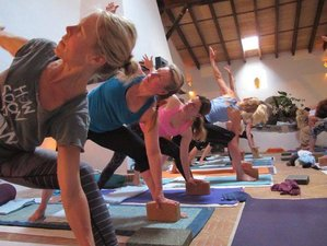 5 Days Mindfulness and Yoga Retreat in Mallorca, Spain