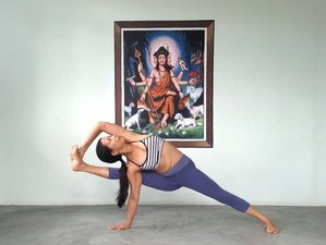 1 Maand Yoga Psychologie Cursus in Bir, India