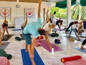 28 Days 300-hour Advanced Yoga Teacher Training in Goa, India
