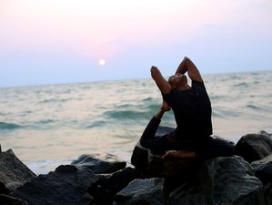 7 Days Private Yoga Holiday in a Boutique Beach Villa in Kerala, India