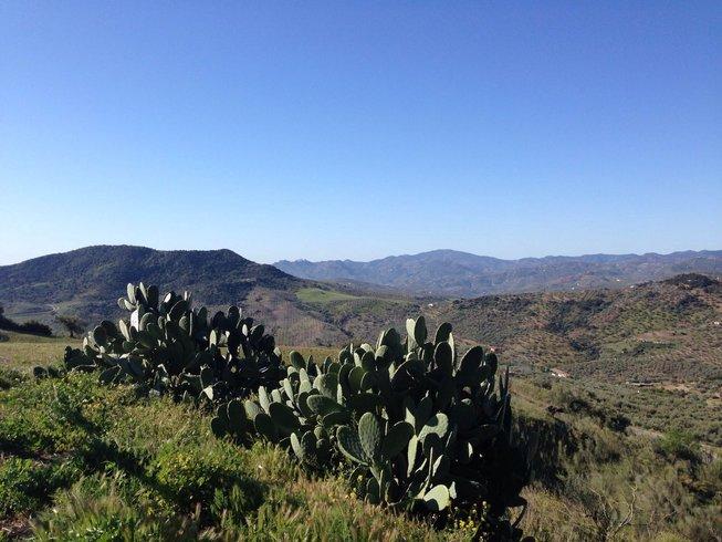 5 Days Energizing Yoga Retreat in Malaga, Spain
