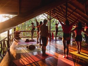 6 Day of Meditation, Cacao Ceremonies, Music, and Wellness Yoga Retreat in the Ecuadorian Amazon