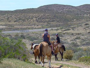 4 Day Premium Seacoast Horse Riding Holiday in Dos Pozos