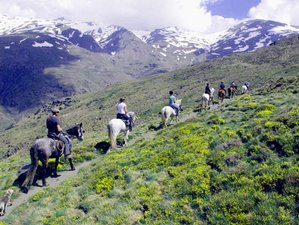 6 Day Alpujarra Short Break Horse Riding Holiday in Andalusia