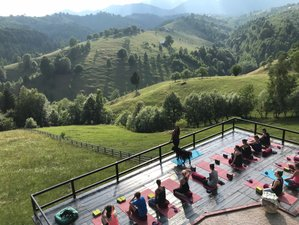 6 Days Feel Good Yoga Holiday with Organic Wine Tasting in Transylvania