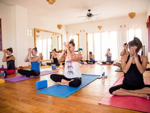 6 Days New Year's Eve Immersion Meditation and Yoga Retreat in Todos Santos, Mexico