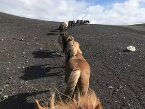 6 Day Southern Highland Horse Riding Adventure through Fjallabak and Landmannalaugar in Iceland