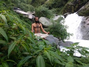 11 Day 100-Hours Yin Yoga Teacher Training in Dharamshala