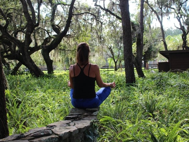 26 Days 300-Hour Immersion Yoga Teacher Training with Yoga Therapy and Aerial Yoga in Florida, USA