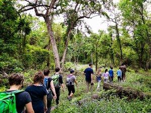 6-Daagse Wildlife Tour in Kathmandu en Nationaal Park Chitwan, Nepal