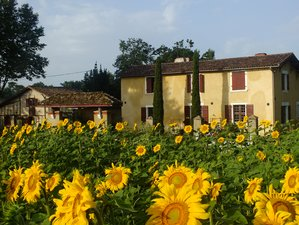 22 Day 200 Hours Hatha-Vinyasa Yoga Teacher Training in Coudures, the Landes