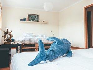 Oporto Ocean Hostel in Matosinhos, Portugal